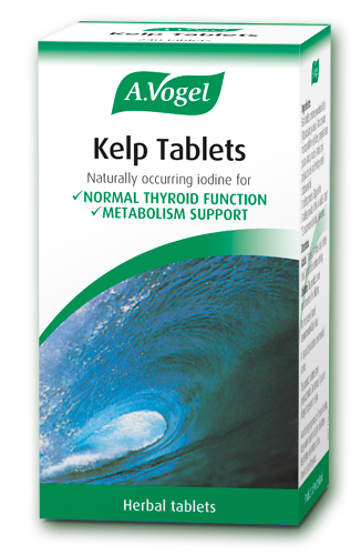Kelp Contains Iodine Supporting Metabolism And Normal Thyroid Function