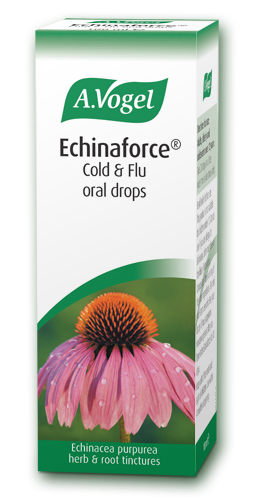 Echinacforce Echinacea Drops And Tablets For Cold And Flu Relief